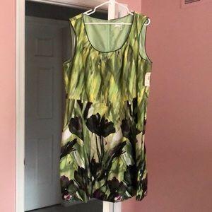 NWT sleeveless dress. Fully lined.